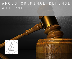 Angus  criminal defense attorney