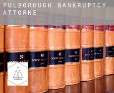 Pulborough village hall  bankruptcy attorney