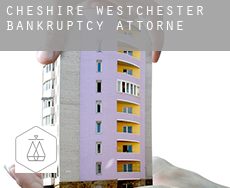 Cheshire West and Chester  bankruptcy attorney